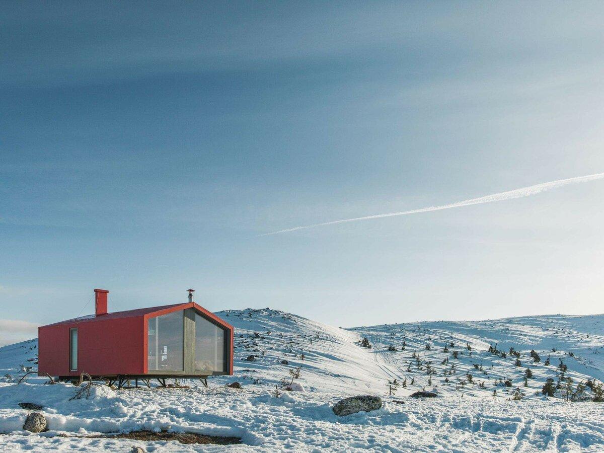 тенденции нейл-арте дом для арктики фото доступен